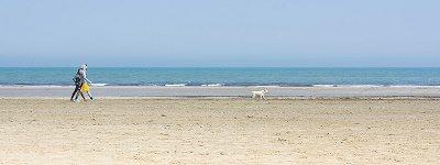 spiagge  per _cani
