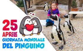 PINGUIN_DAY_721x440px